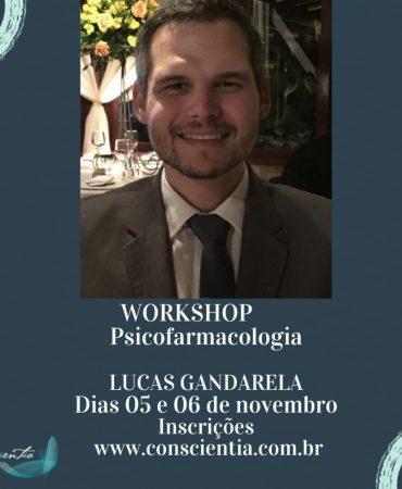 workshop-lucas-gandarela